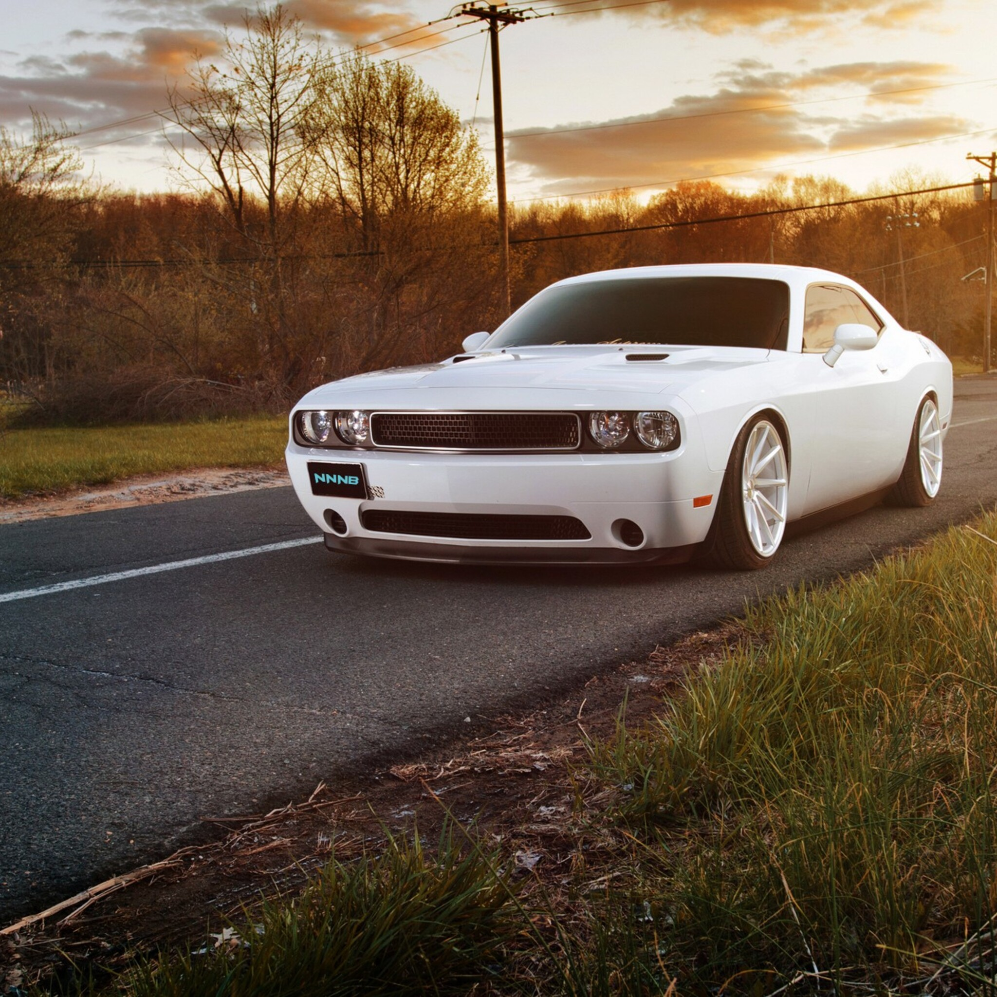 Download White Muscle Car Hd Wallpapers In Screen