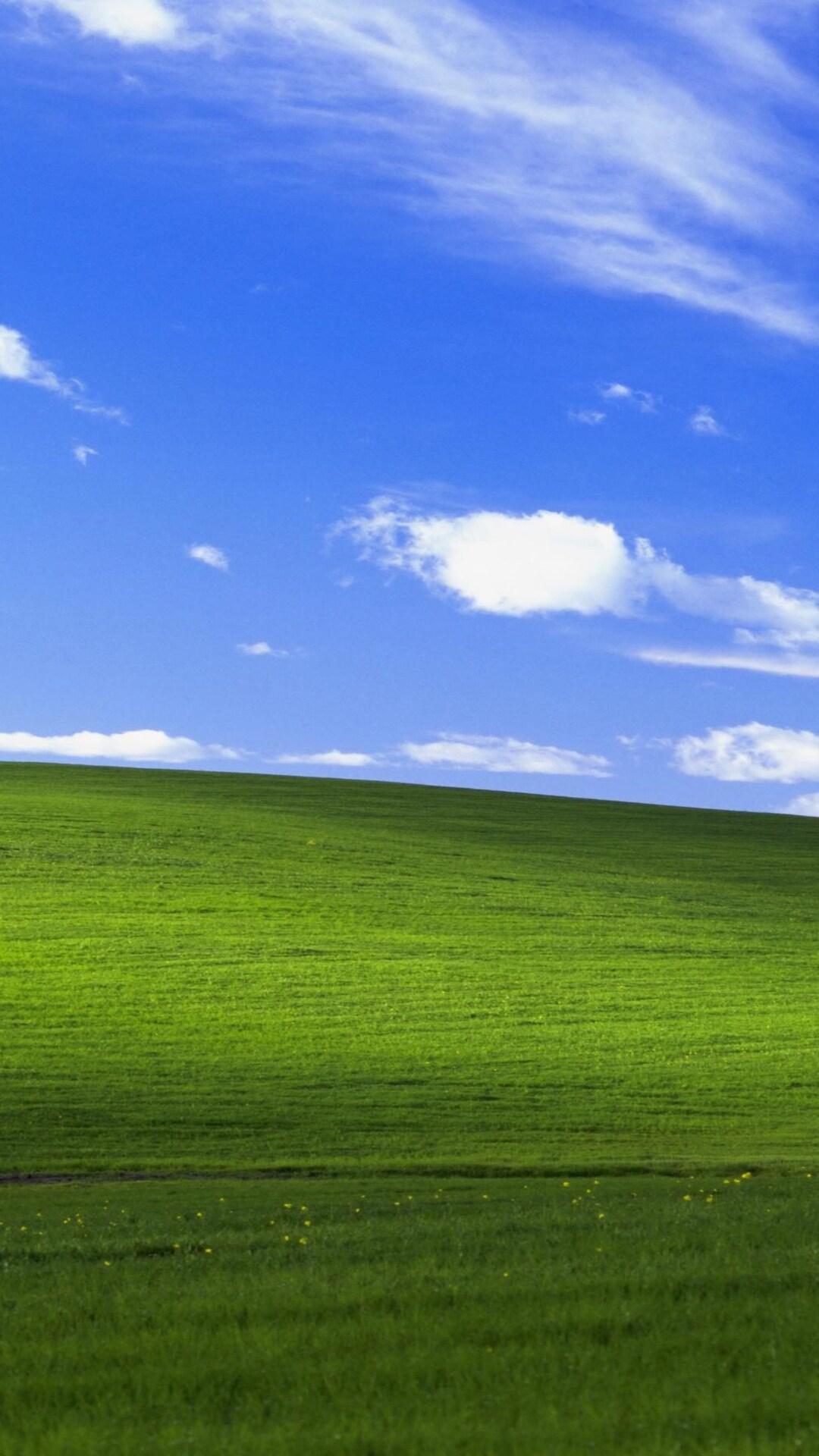 1080x1920 Windows Xp Bliss 4k Iphone 7,6s,6 Plus, Pixel Xl