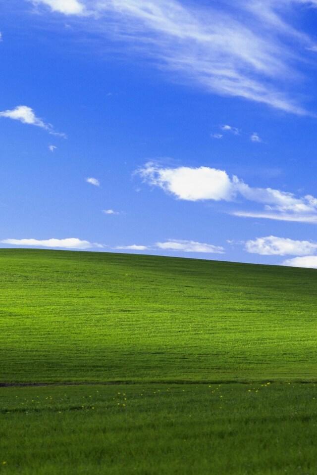 windows-xp-bliss-4k-lu.jpg