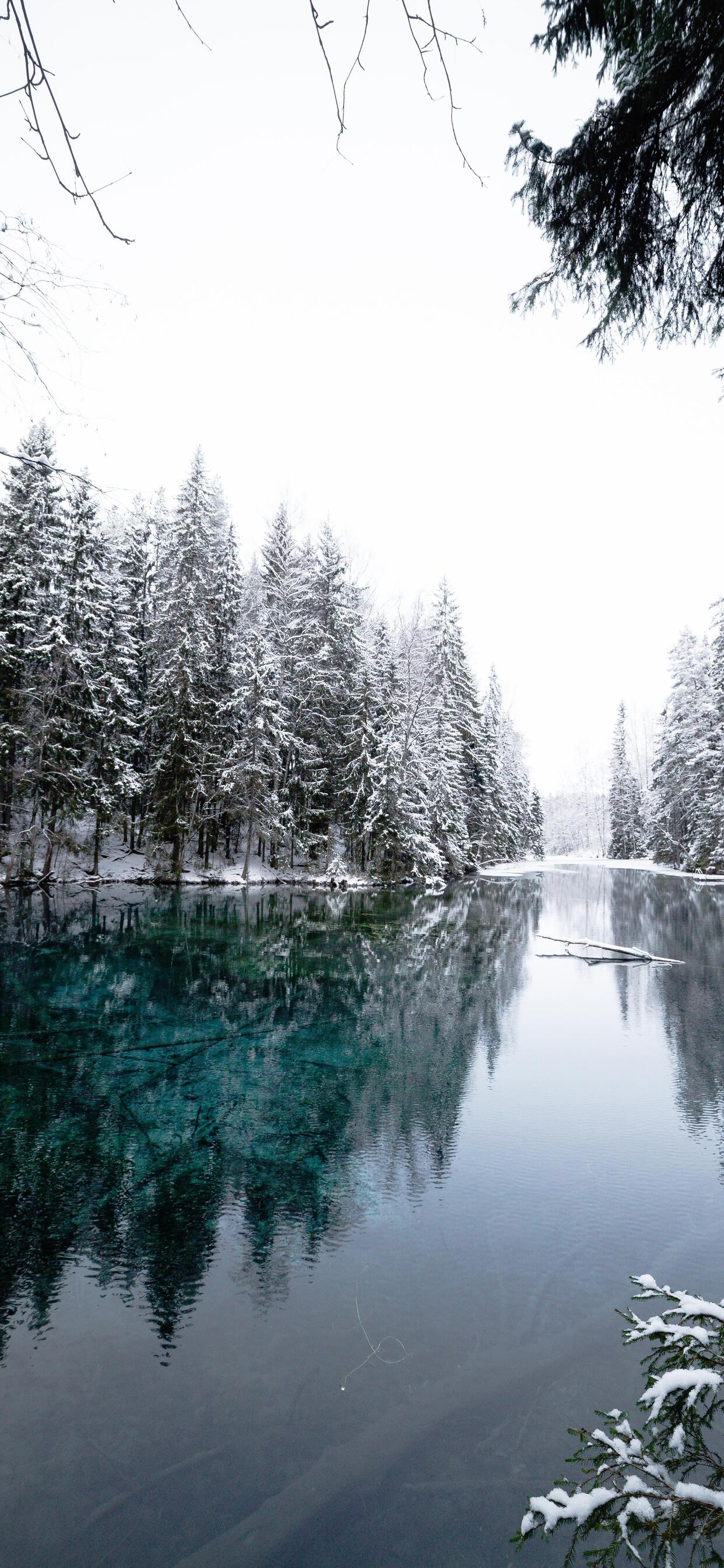 1242x2688 Winter Cold Lake Iphone Xs Max Hd 4k Wallpapers