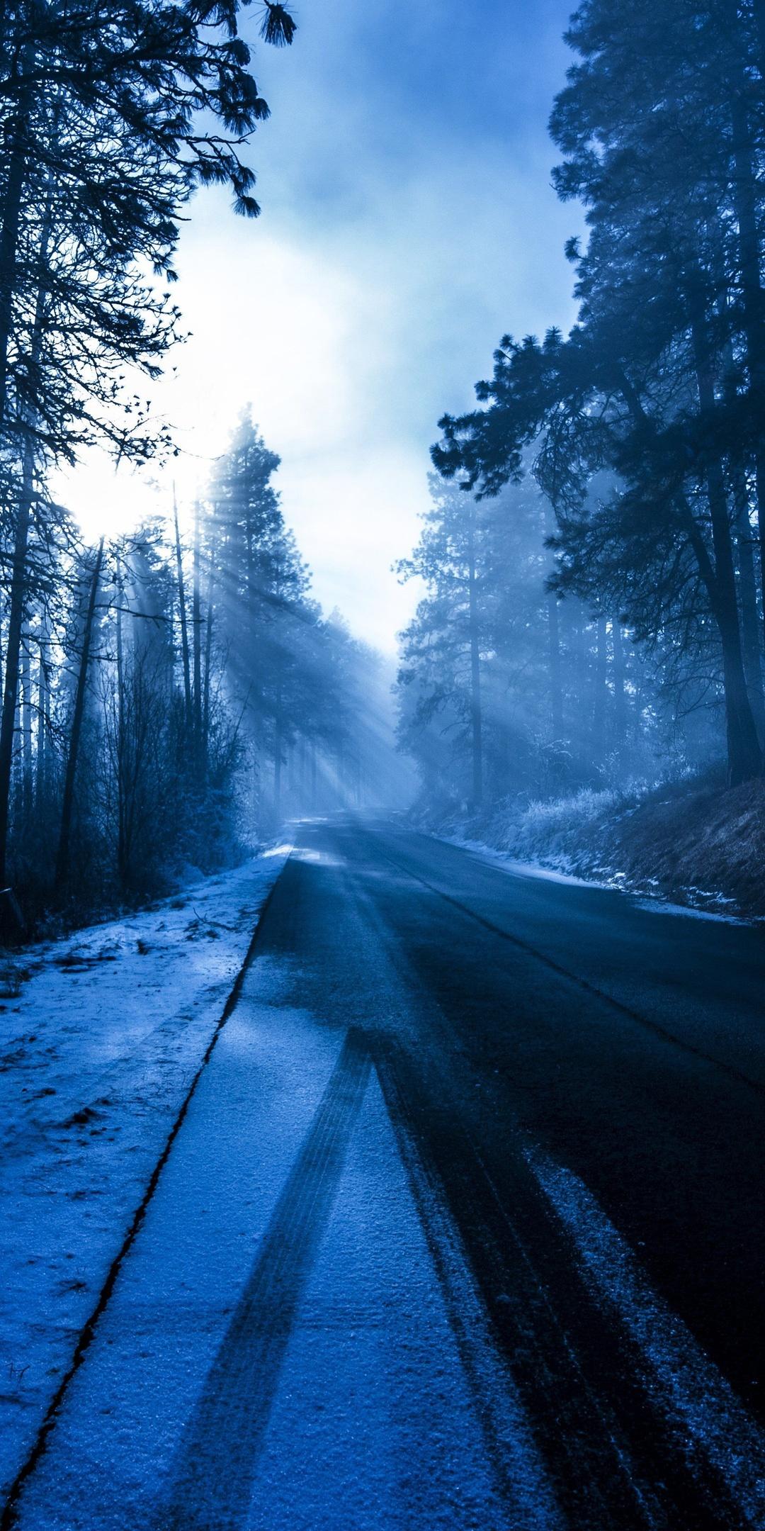 winter-road-nature-5k-2w.jpg