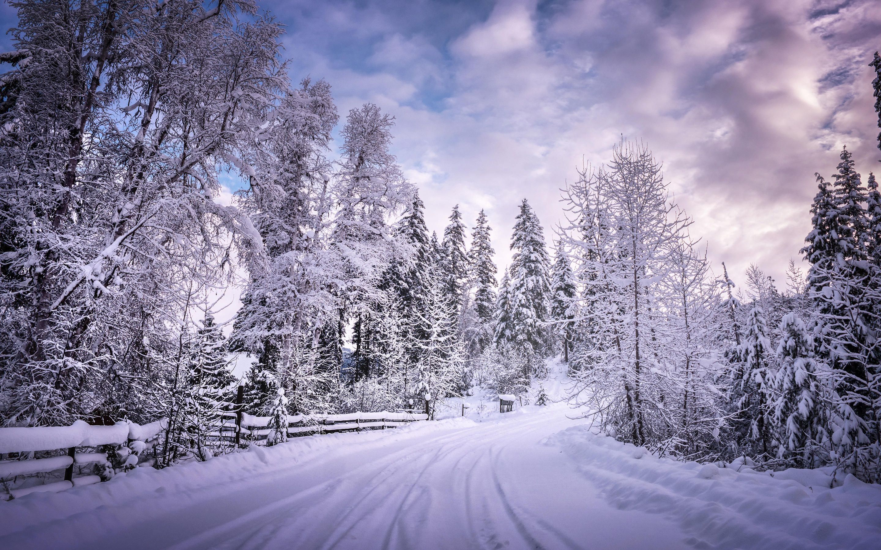 4k Iphone Wallpapers: 2880x1800 Winter Road Snow Trees White Macbook Pro Retina