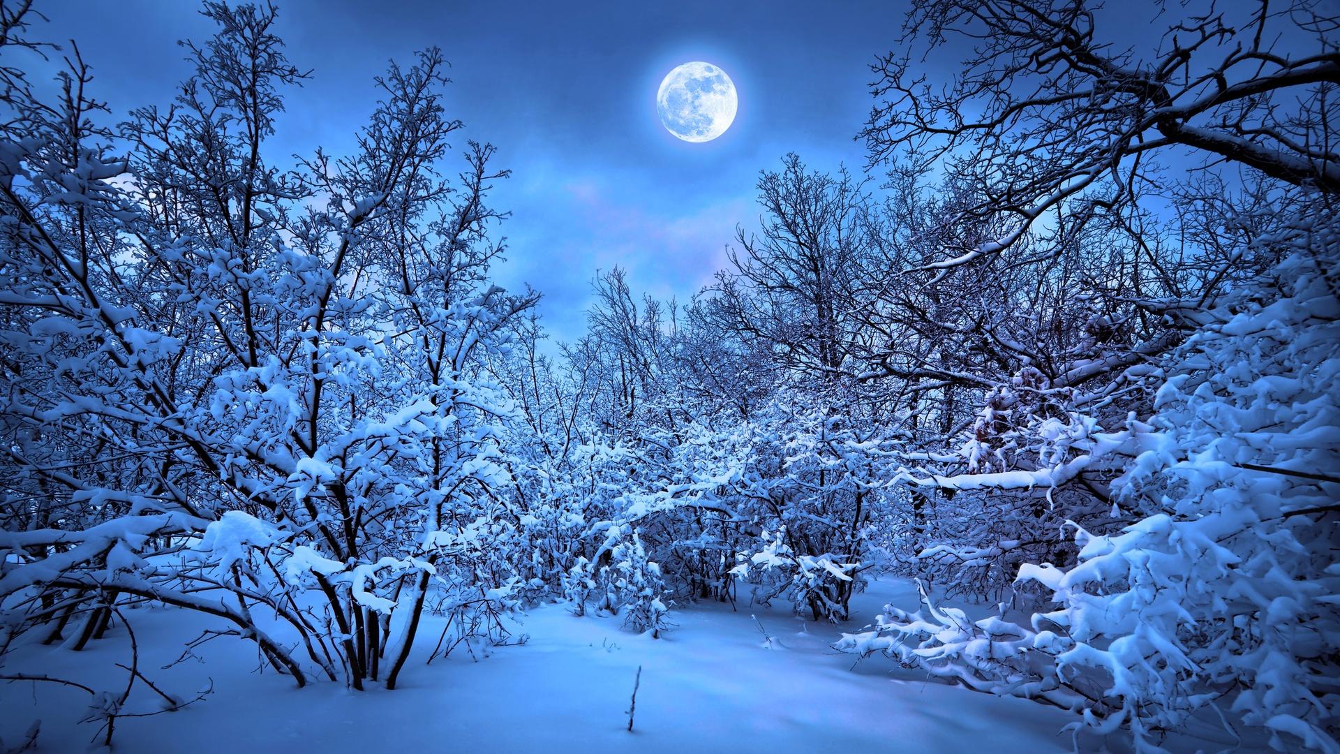 1920x1080 Winter Snow Nature 4k Laptop Full Hd 1080p Hd 4k