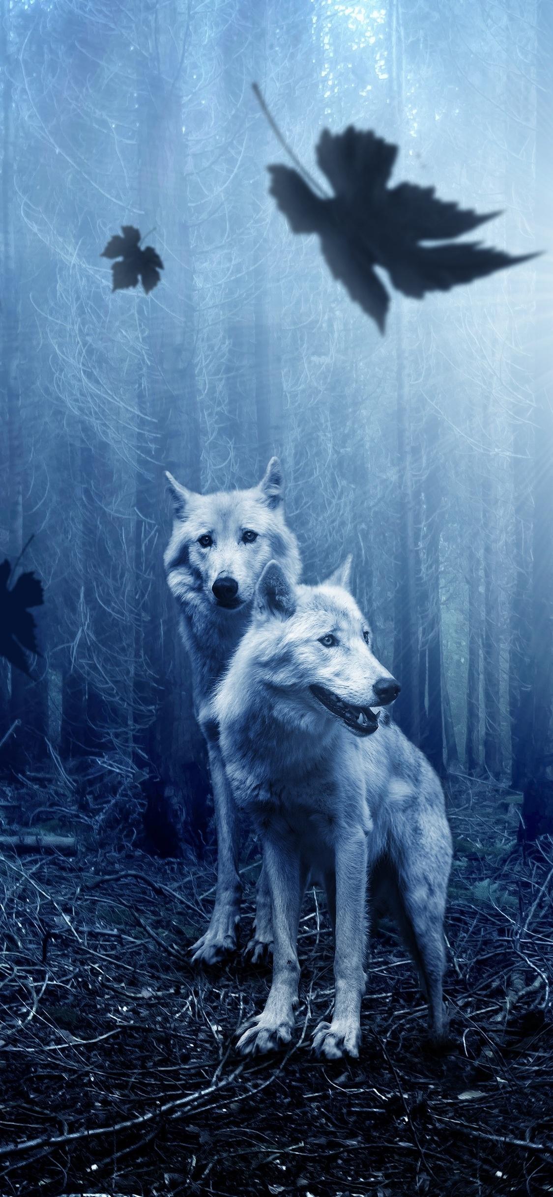 1125x2436 Wolf Predator Forest 5k Iphone X 10 Hd 4k