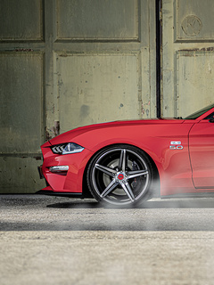 wolf-racing-ford-mustang-2019-new-33.jpg