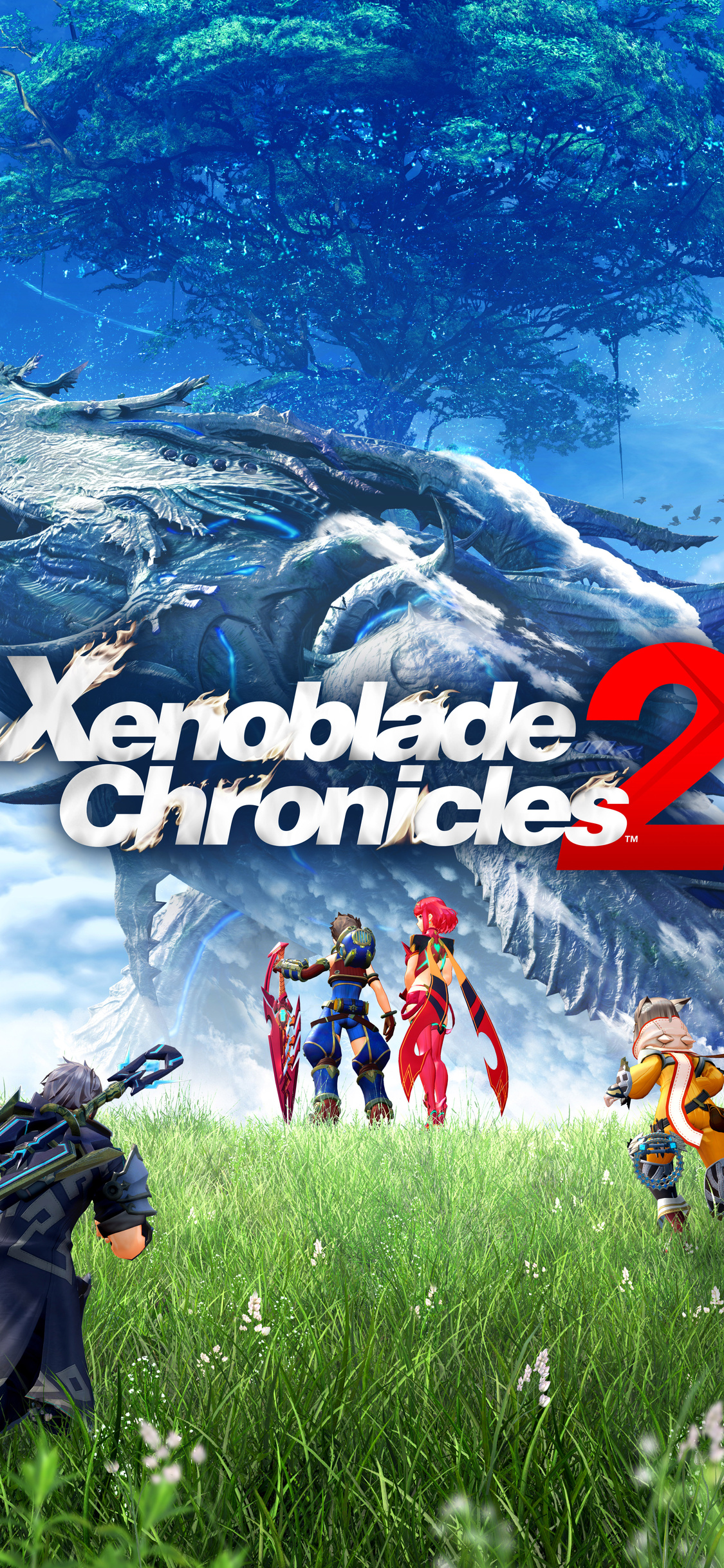 1125x2436 Xenoblade Chronicles 2 Iphone Xs Iphone 10 Iphone X Hd
