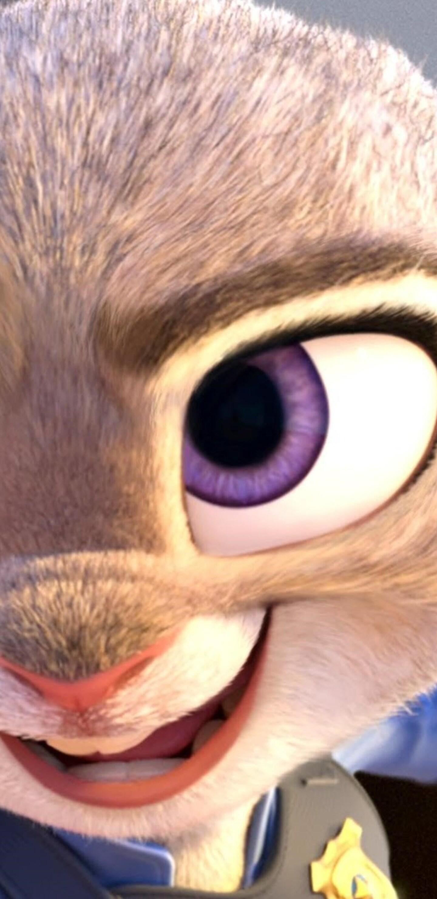 zootopia-movie-wide.jpg