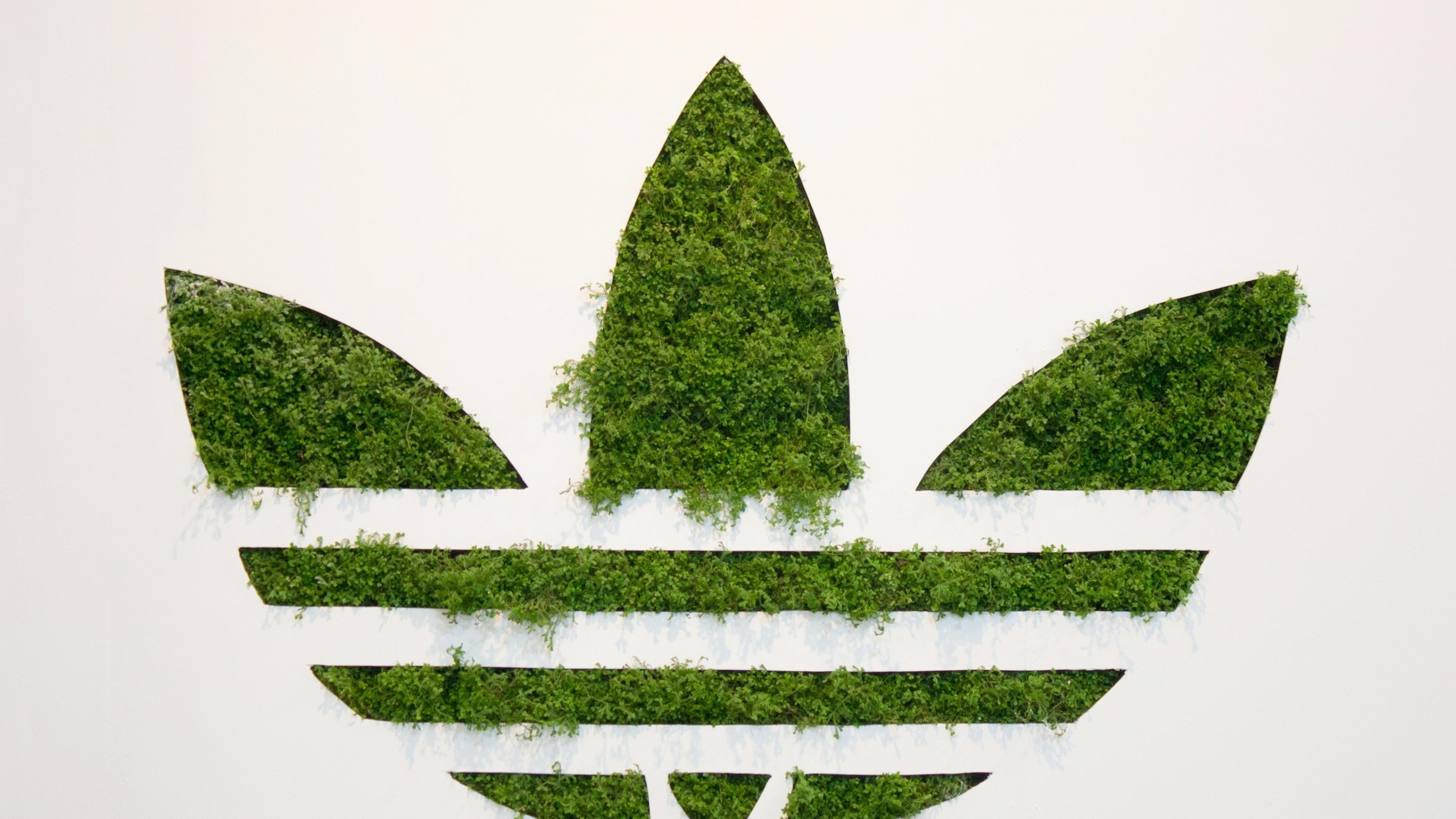 2560x1700 Adidas Grass Logo Chromebook Pixel Hd 4k Wallpapers
