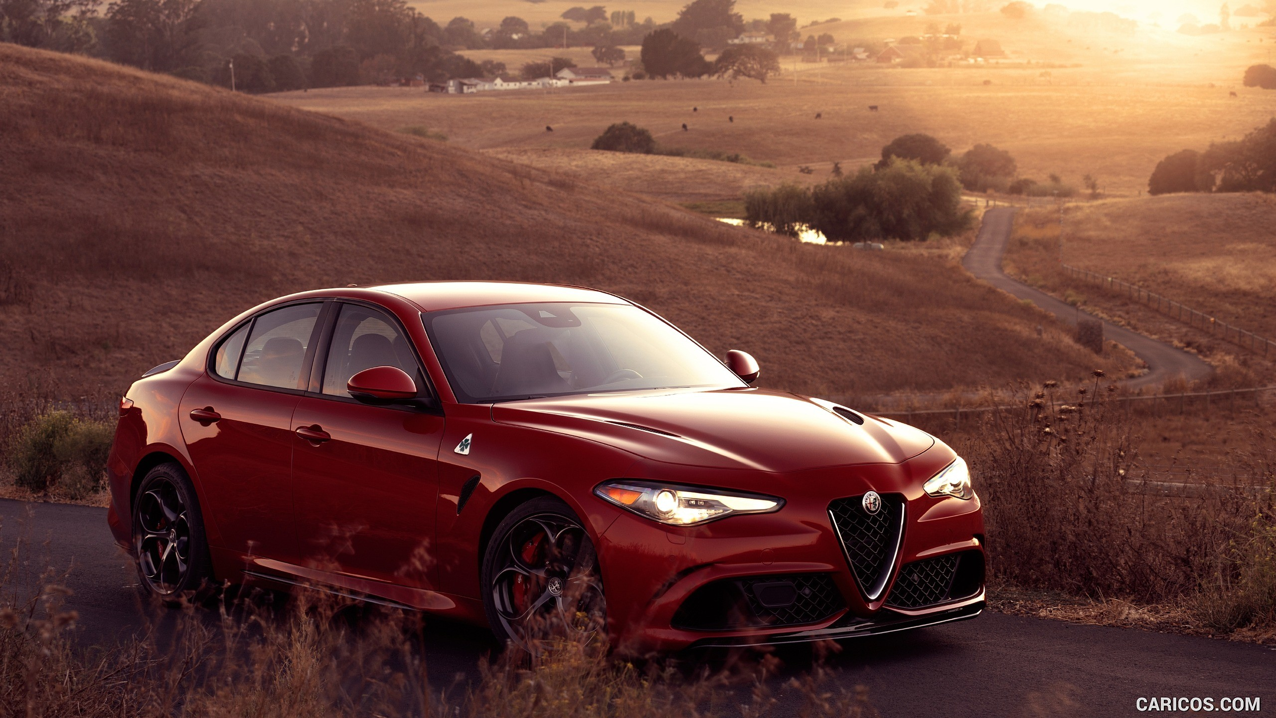 1366x768 Alfa Romeo Hd 1366x768 Resolution Hd 4k Wallpapers Images Backgrounds Photos And Pictures