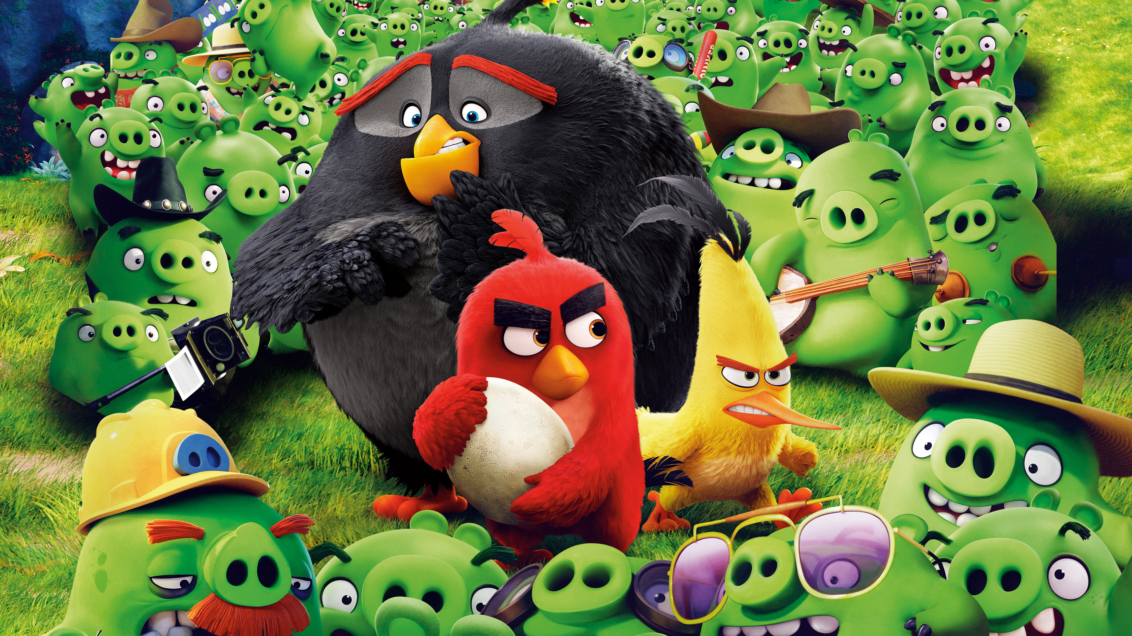 Angry Birds Save The Egg 4k Hd Movies 4k Wallpapers Images Backgrounds Photos And Pictures