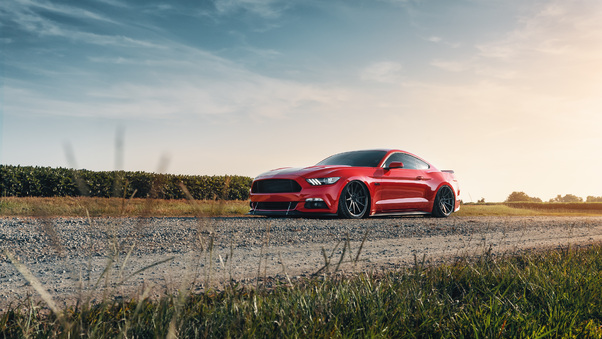 Full HD Tjin Edition Ford Mustang Ecoboost 2018 Rear Wallpaper