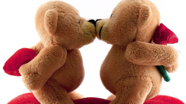 bears-kissing-wide.jpg