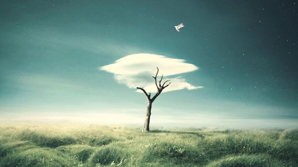 cloud-tree-at.jpg