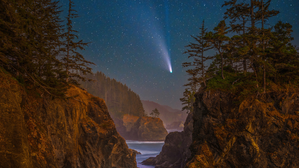 coast-stars-scenery-oregon-night-trees-5k-4k.jpg