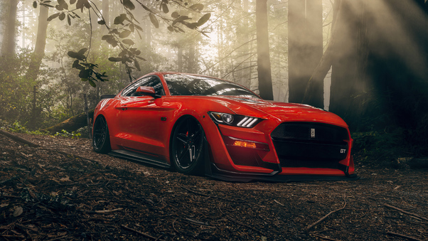 ford-mustang-gt-forest-lord-5k-oq.jpg