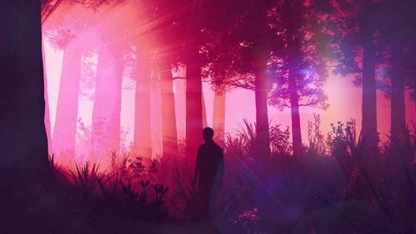 lost-in-woods-i9.jpg