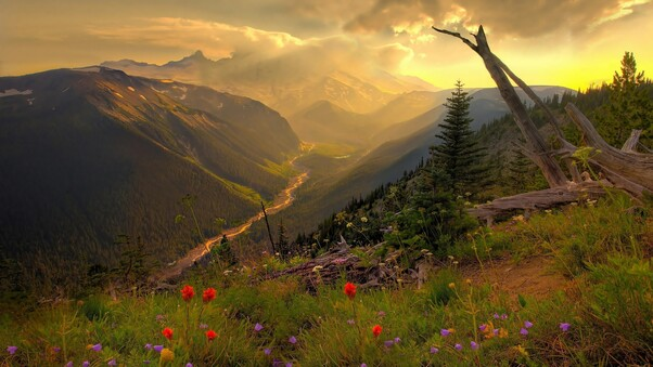 mountain-view-from-top-wide.jpg