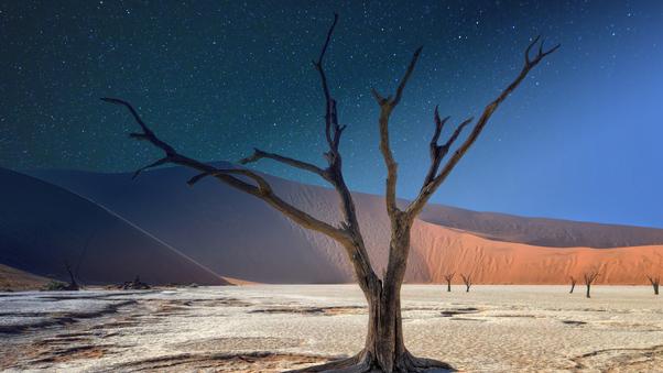 namibia-deadvlei-panorama-5k-tg.jpg
