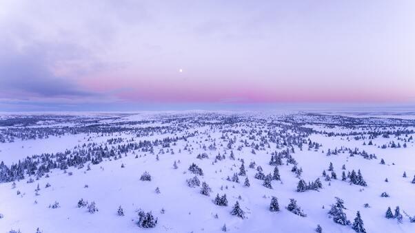 snow-covered-field-4k-92.jpg