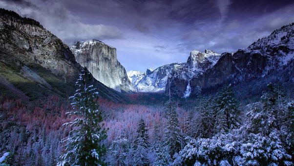 snow-forests-yosemite-scenery-4k-oa.jpg