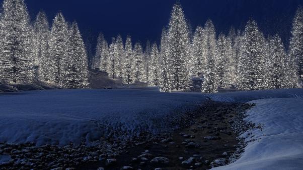 snow-trees-wallpaper.jpg
