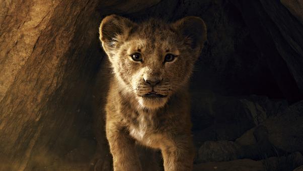 the-lion-king-2019-8k-br.jpg