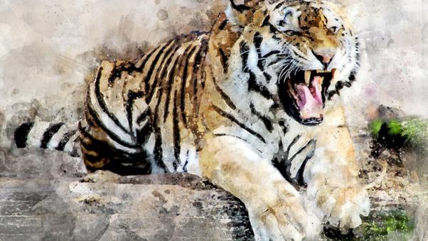 tiger-abstract-art-4k-vr.jpg