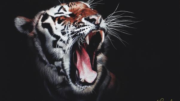 tiger-roar-qq.jpg