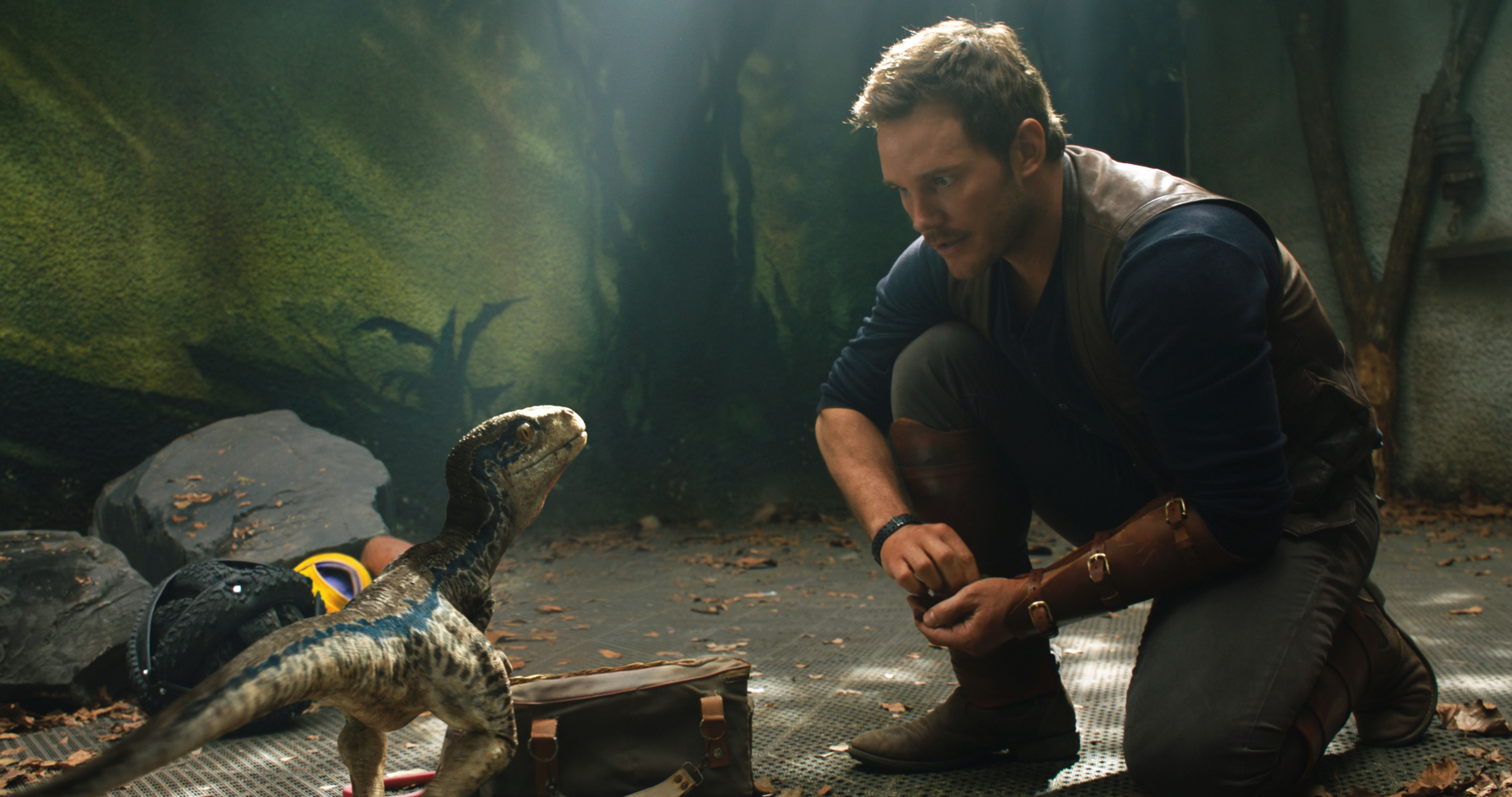 Chris Pratt And Little Raptor Jurassic World Fallen Kingdom 5k Hd