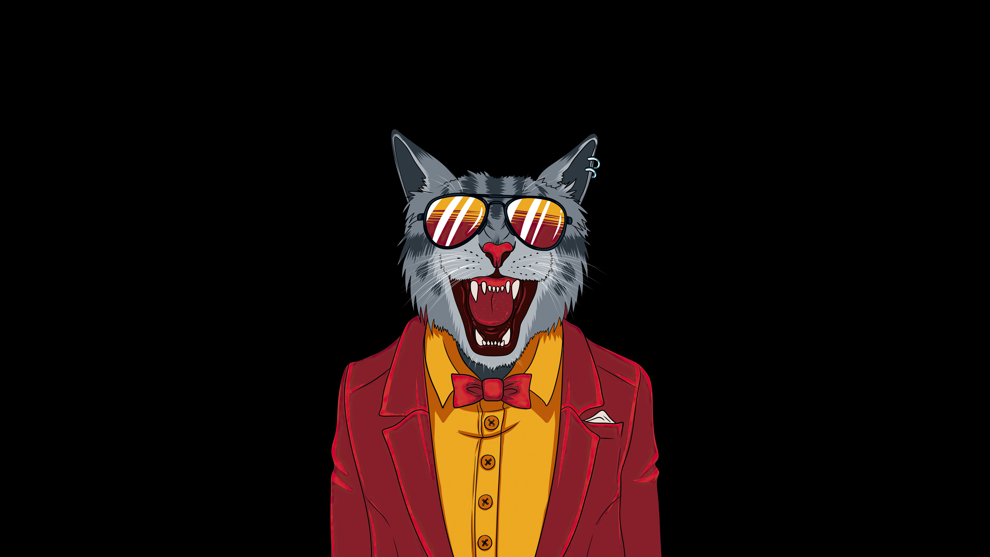 Cool Cat Minimal 4k Hd Artist 4k Wallpapers Images Backgrounds Photos And Pictures