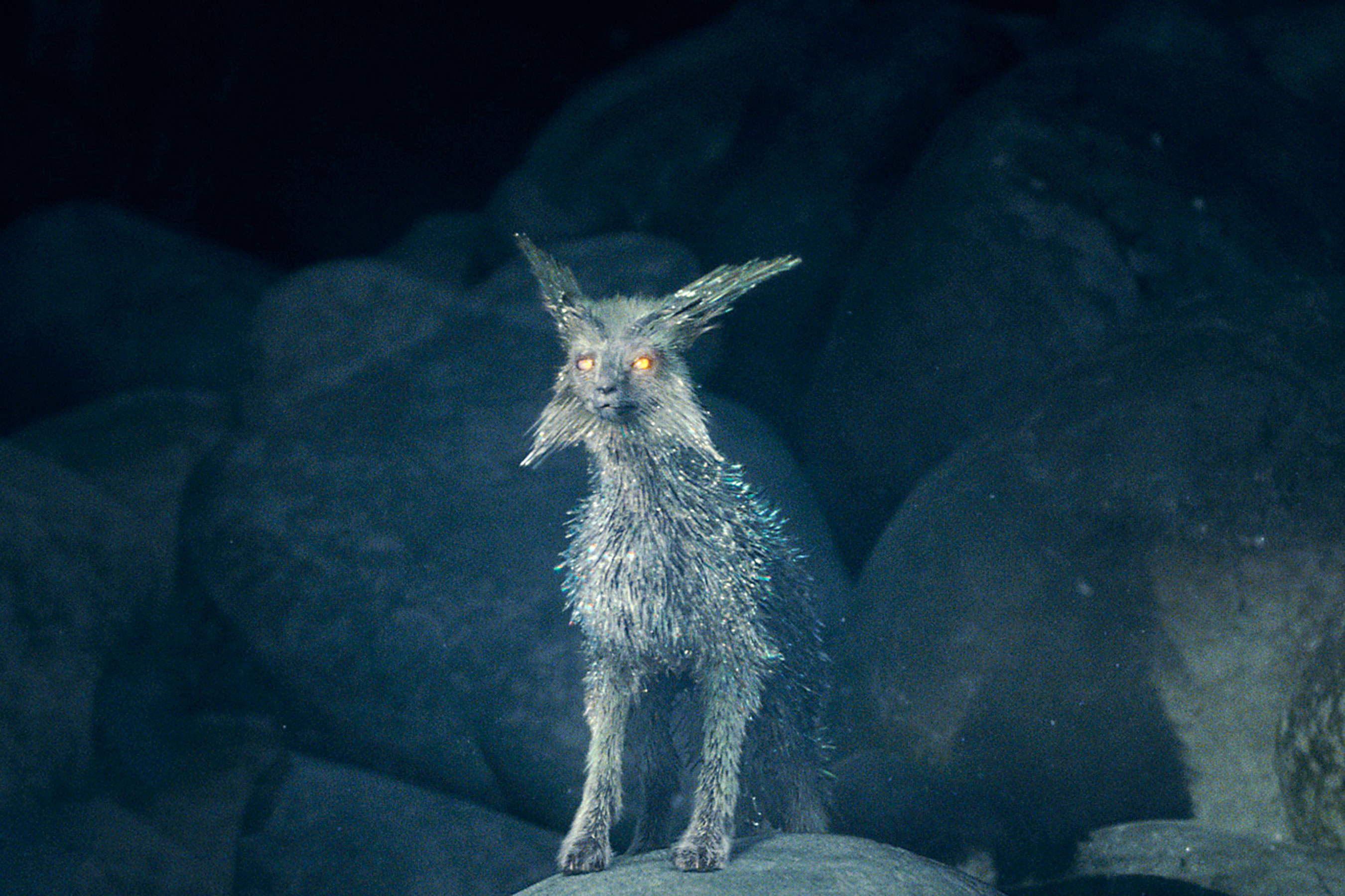 Crystal Foxes Of Crait Star Wars The Last Jedi Hd Movies 4k Wallpapers Images Backgrounds Photos And Pictures