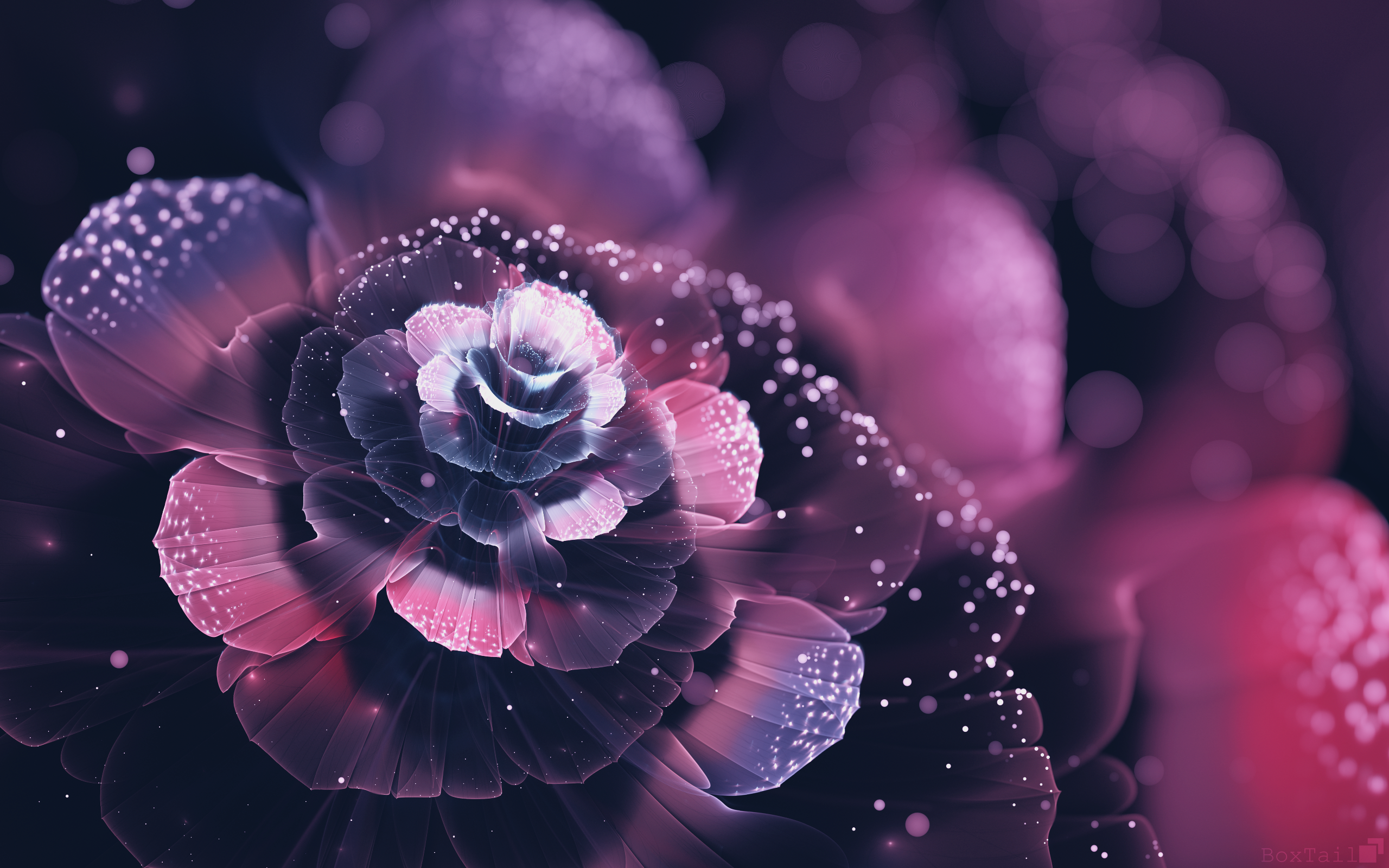 Fractal Flowers Abstract Hd Abstract 4k Wallpapers Images Backgrounds Photos And Pictures