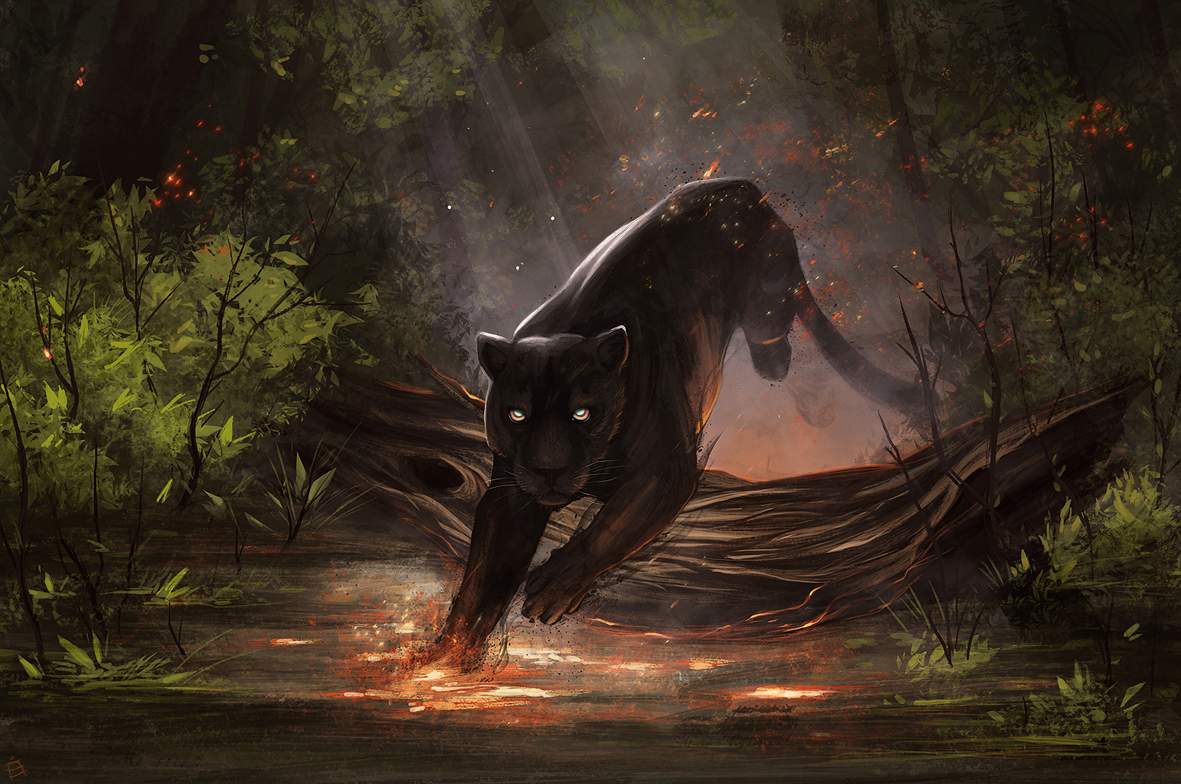 2048x1152 Jaguar Black Cat 2048x1152 Resolution Hd 4k Wallpapers Images Backgrounds Photos And Pictures