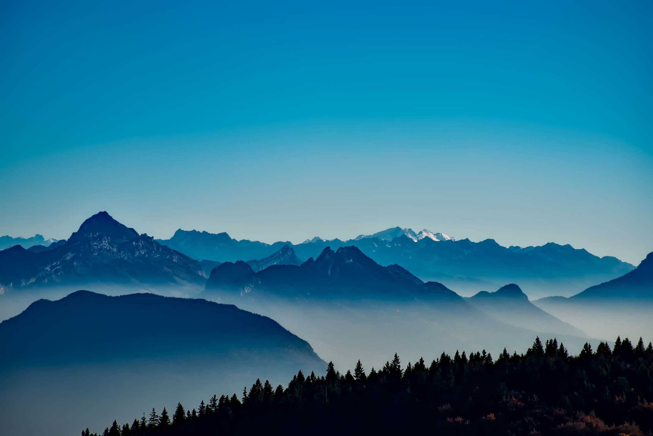 mountains mist trees 55