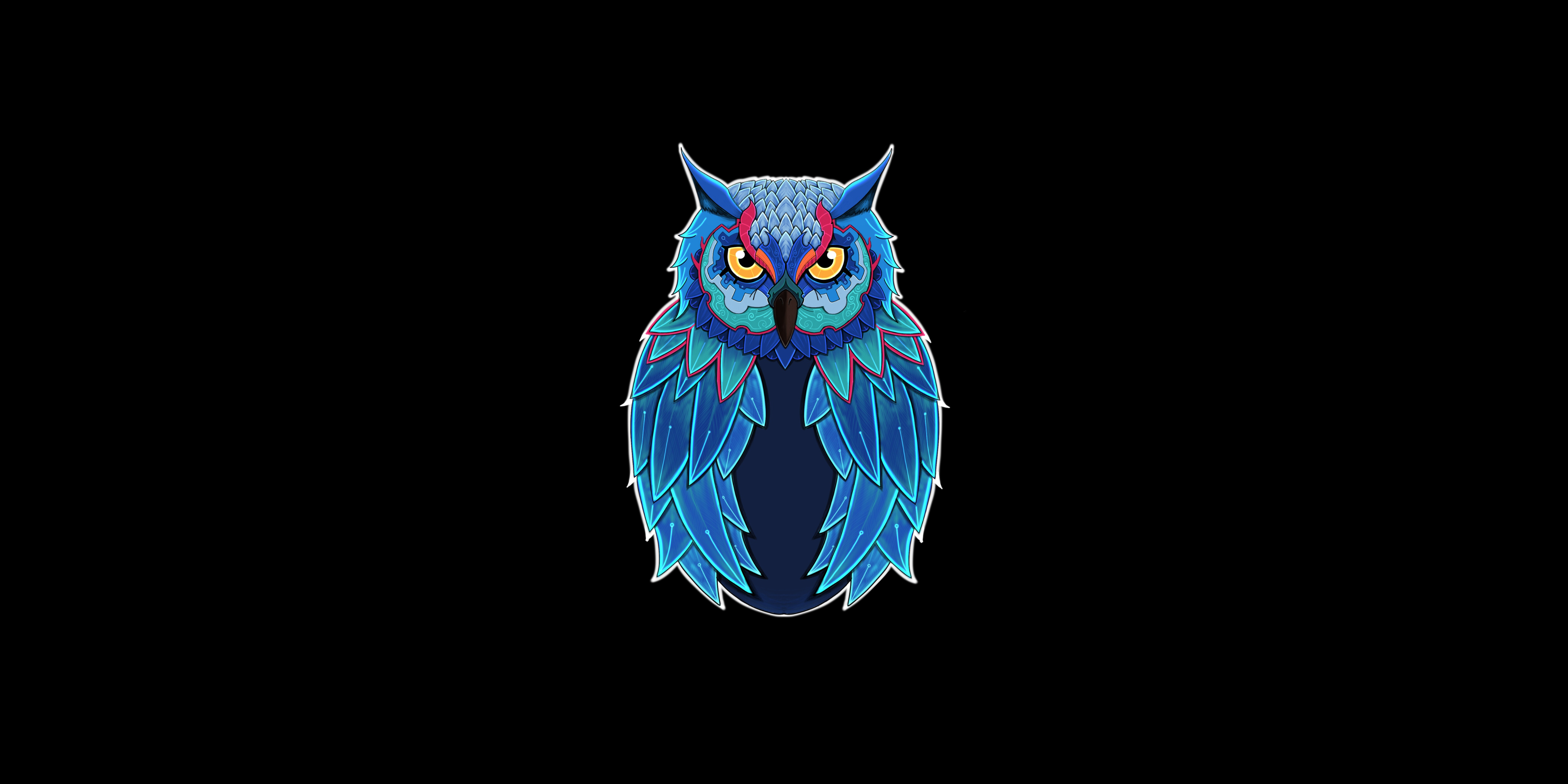 Owl Dark 5k Hd Animals 4k Wallpapers Images Backgrounds Photos And Pictures