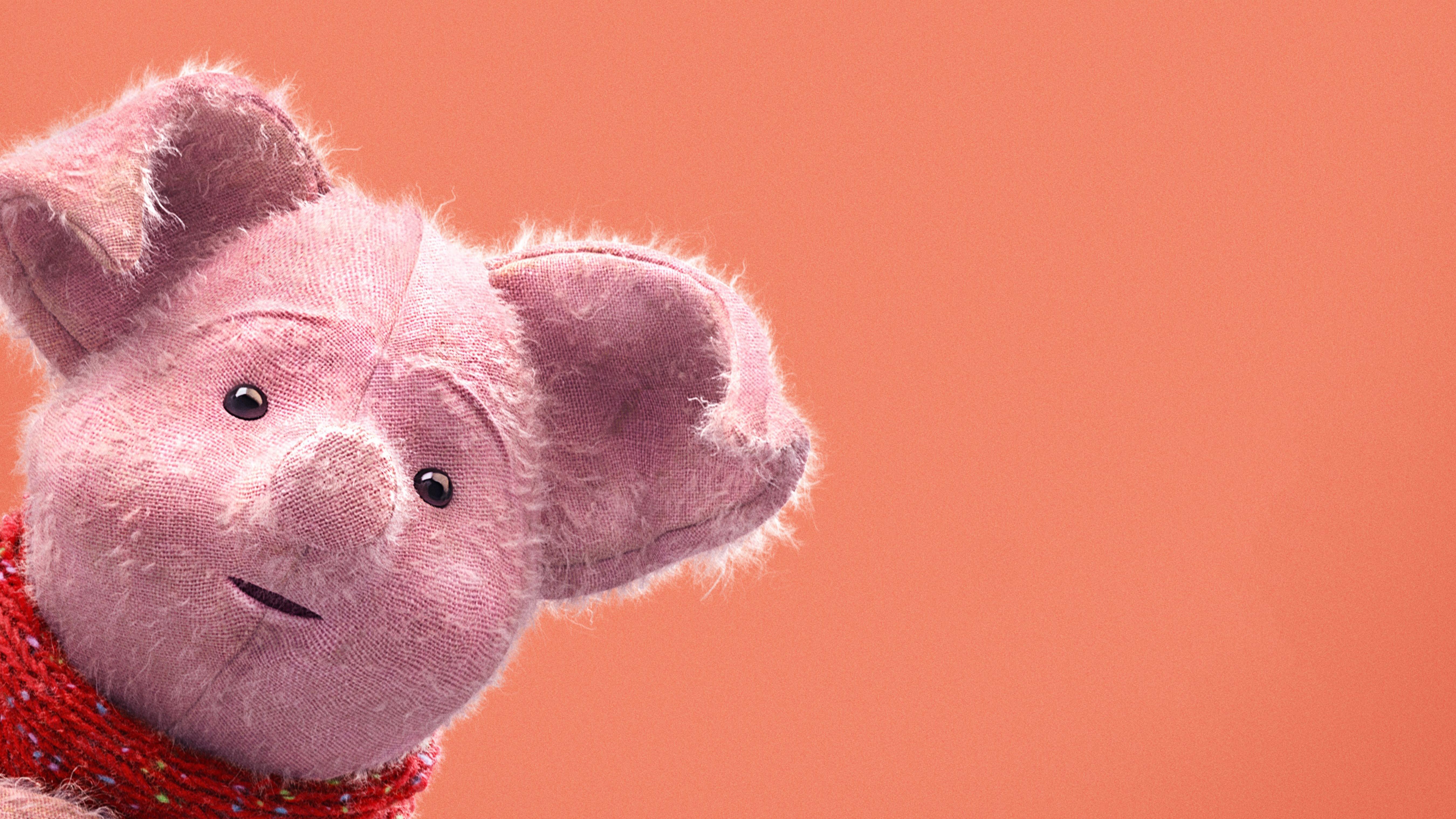 породы обои года свиньи рецепты засолки белых