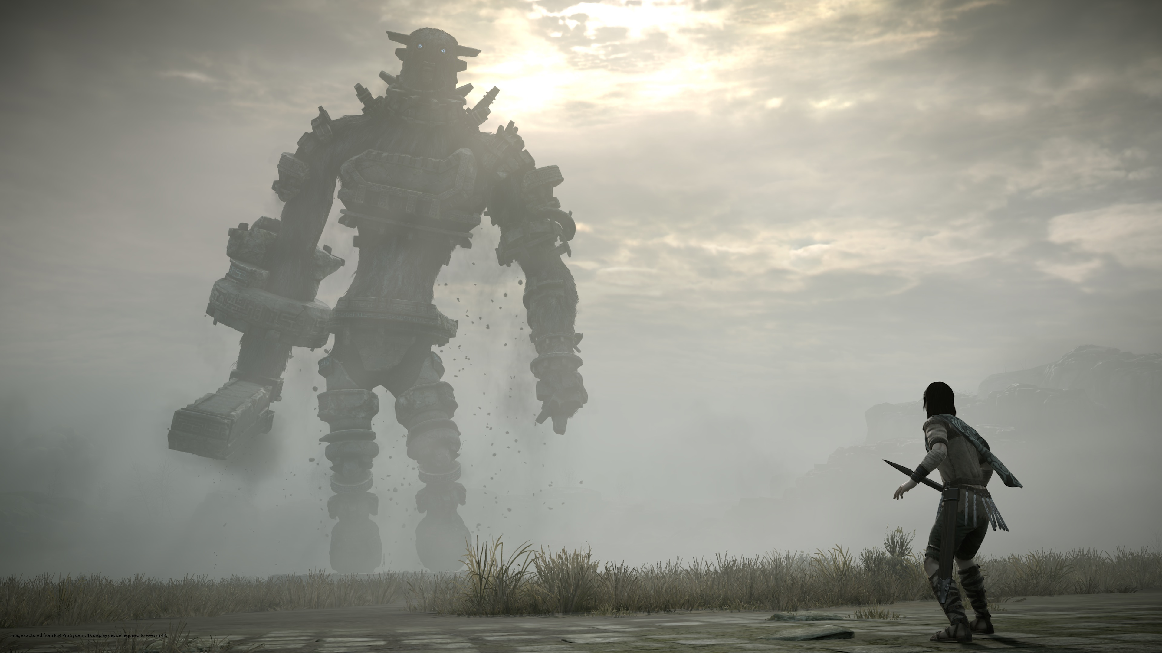 2560x1700 Psx 2017 Shadow Of The Colossus Collectors Edition Ps4