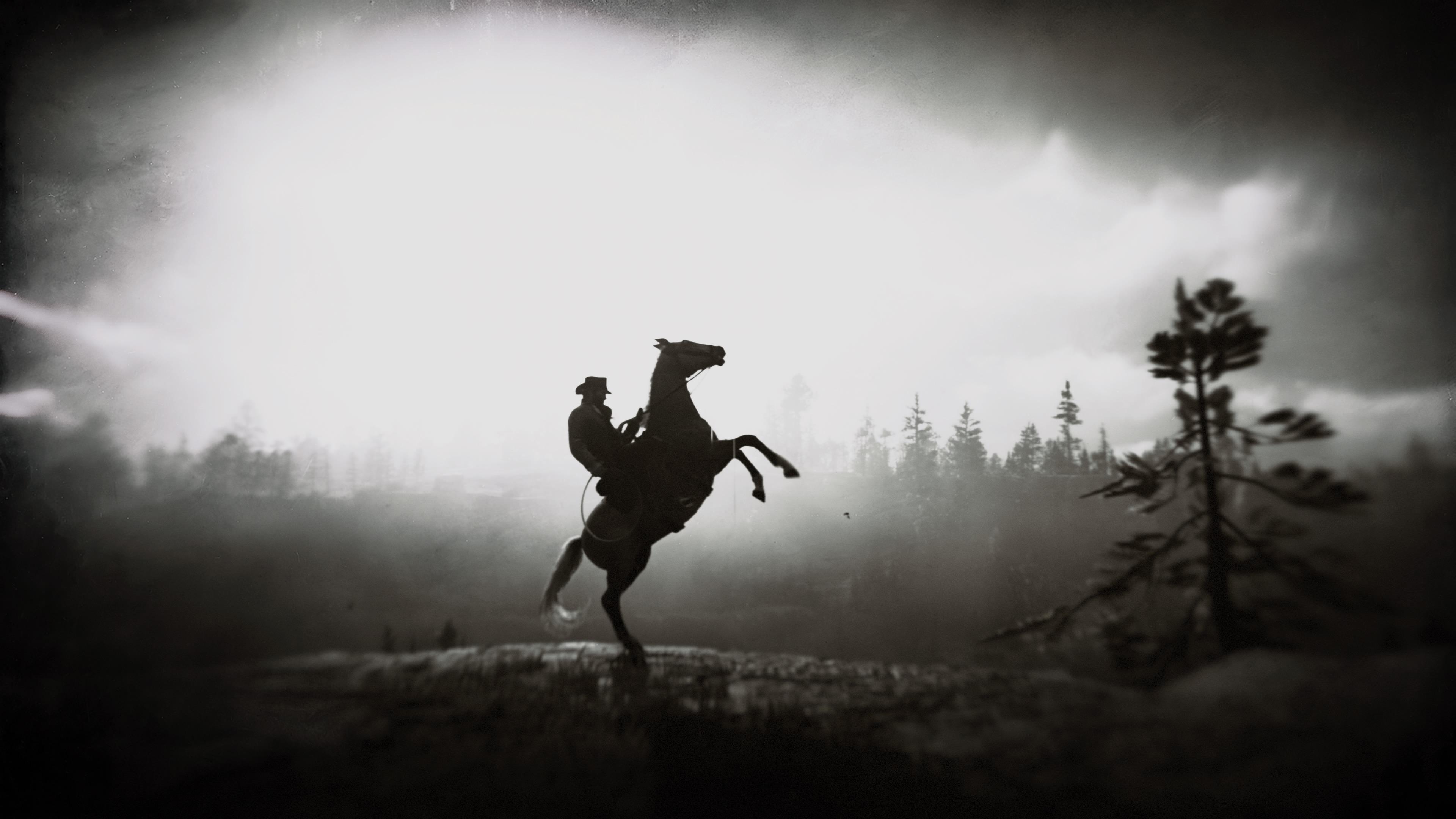 Red Dead Redemption 2 Horse Ride 4k, HD Games, 4k ...