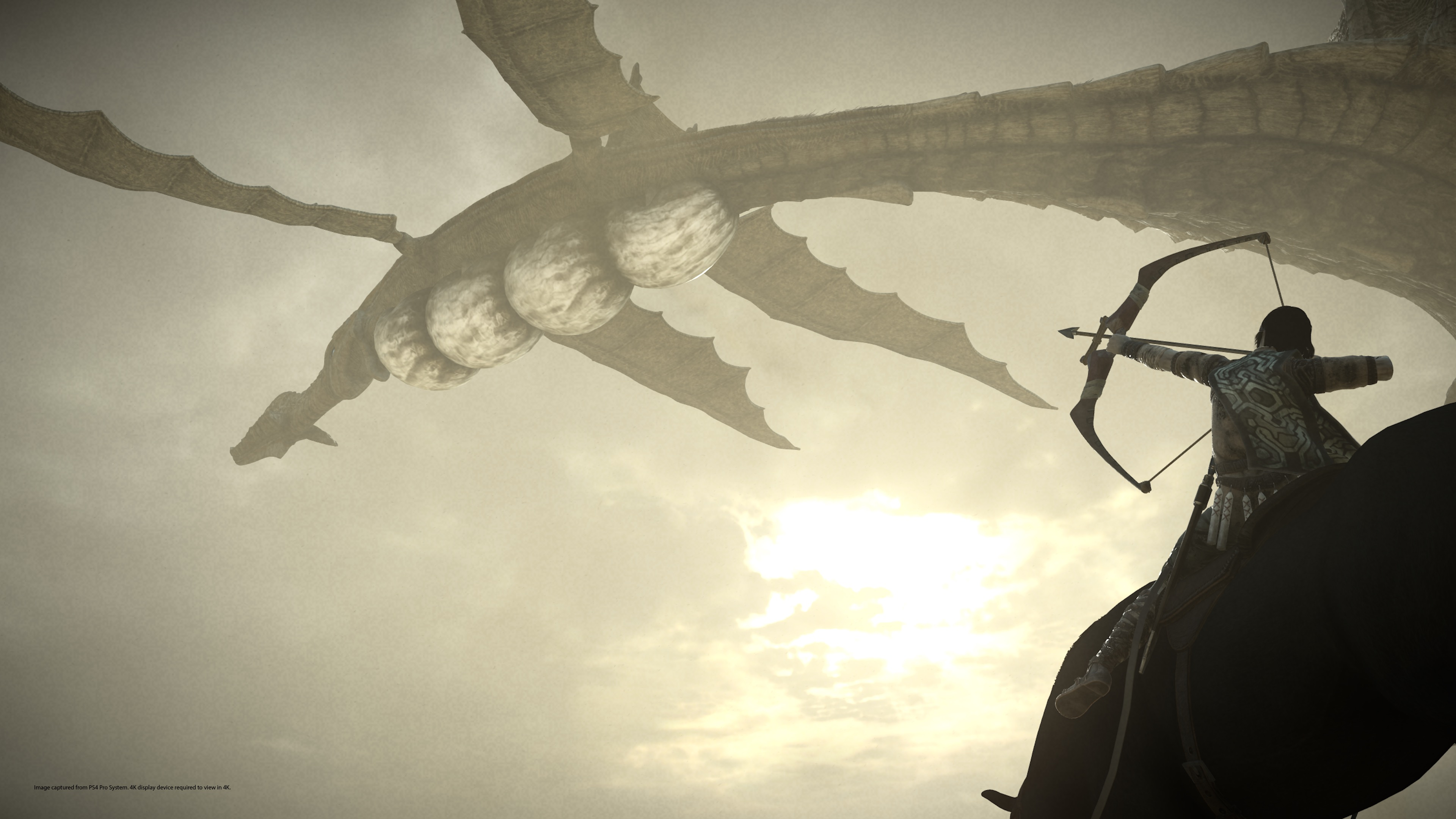 1600x900 Shadow Of The Colossus Collectors Edition 1600x900