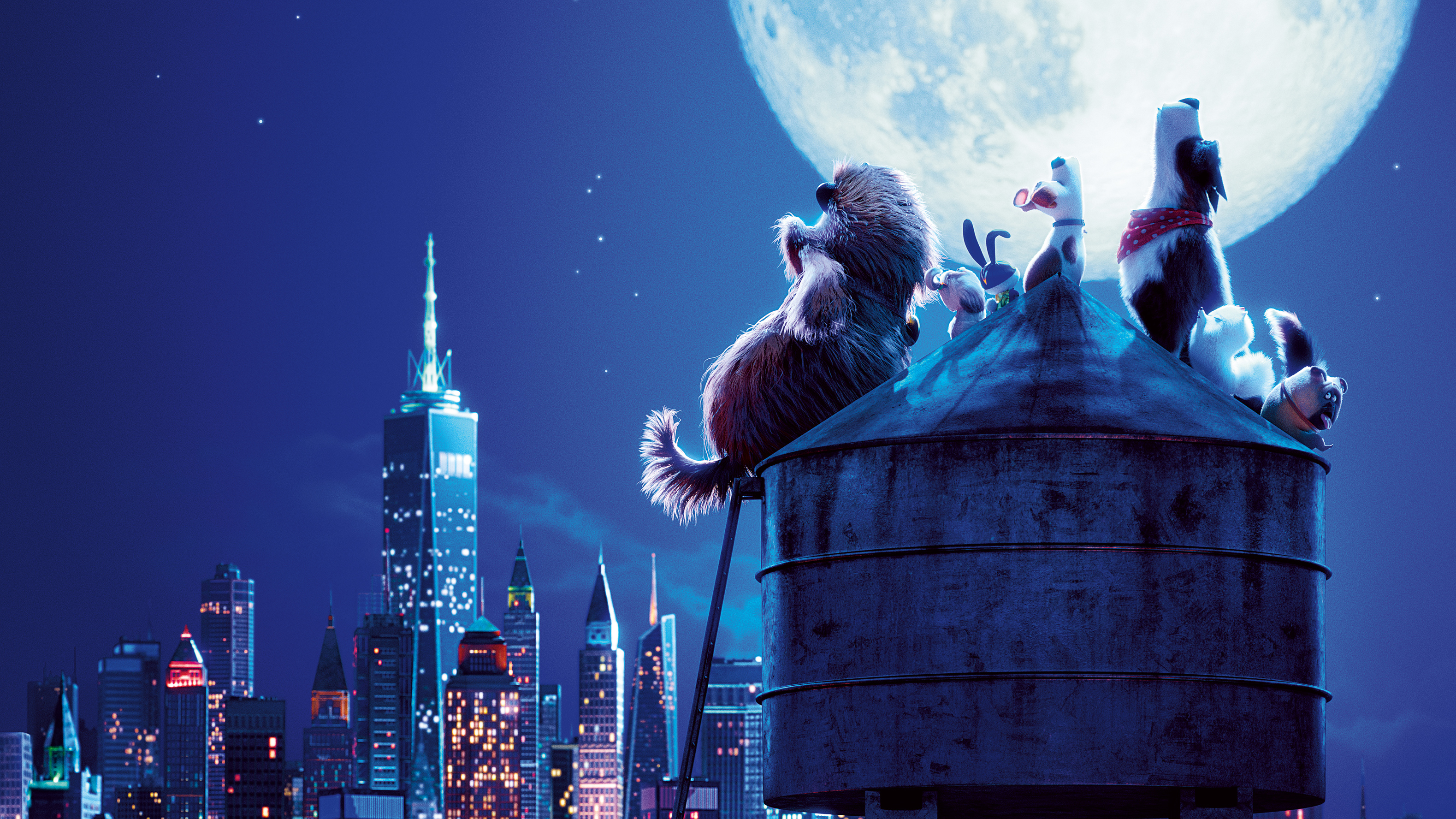 The Secret Life Of Pets 2 Hd Movies 4k Wallpapers Images Backgrounds Photos And Pictures