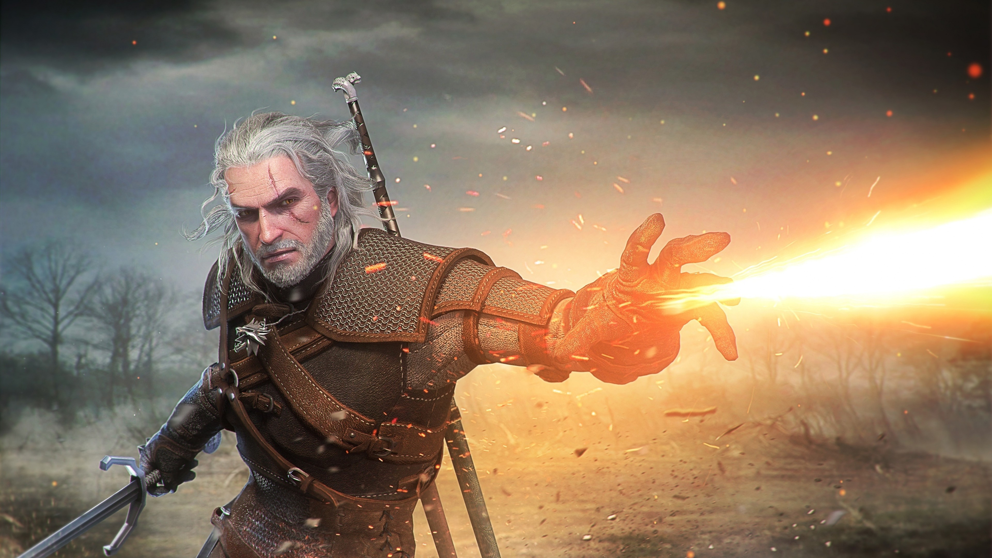 The Witcher 3 Wild Hunt Artwork Hd Games 4k Wallpapers Images
