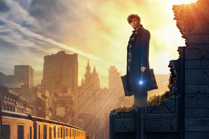 2016 Fantastic Beasts And Where To Find Them