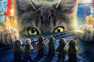 2017 The Lego Ninjago Movie