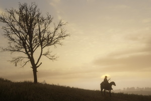 2018 Red Dead Redemption 2 PS4 4k
