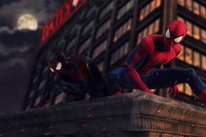 2018 SpiderMan Into The Spider Verse Movie