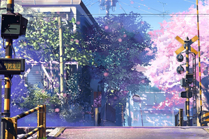 5 Centimeters Per Second Anime Tv Series 4k Wallpaper