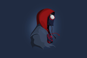 5 Spiderman Minimalism