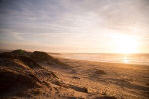 5k Beach Ocean Dunes