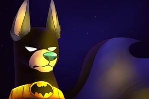 Ace The Bat Hound Wallpaper