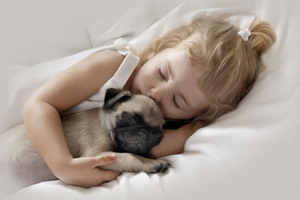 Adorable Little Girl Sleeping with Pug Puppy
